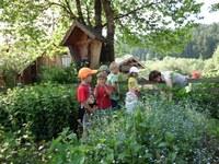 Kinder-Kräutergarten